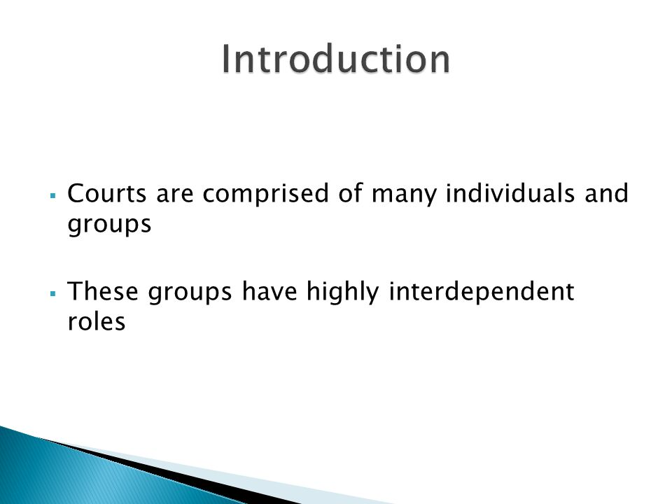 Introduction Courts are comprised of many individuals and groups