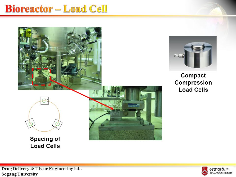 Bioreactor – Load Cell Compact Compression Load Cells