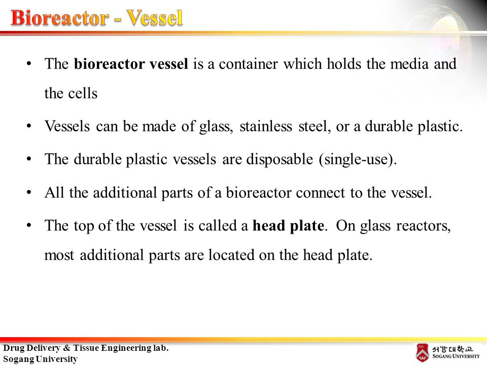 Bioreactor - Vessel The bioreactor vessel is a container which holds the media and the cells.