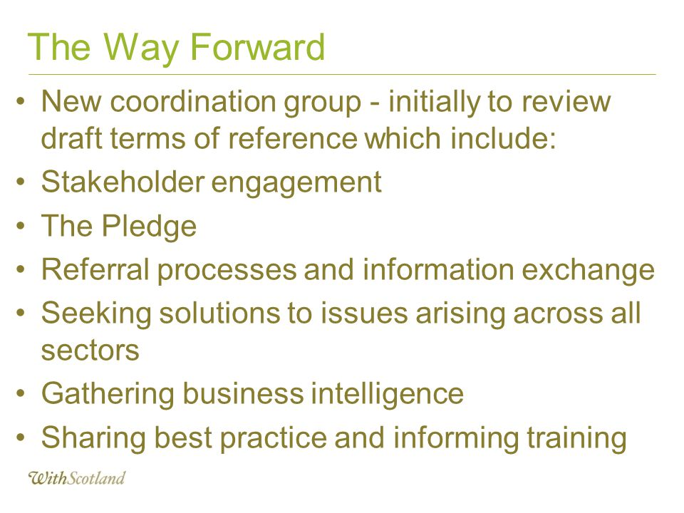 The Way Forward New coordination group - initially to review draft terms of reference which include: