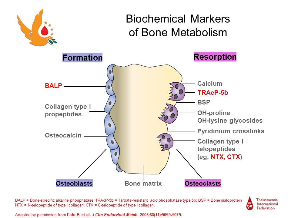 Bone Disease In Haemoglobin Disorders Ppt Video Online
