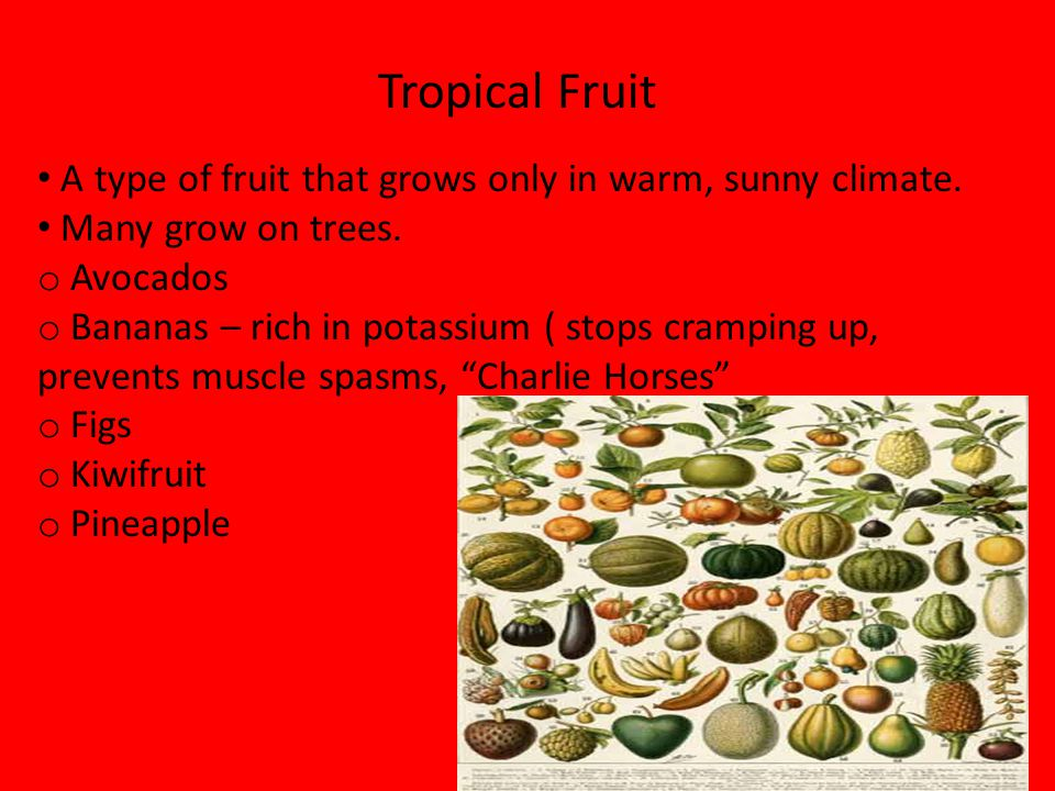 A type of fruit that grows only in warm, sunny climate.