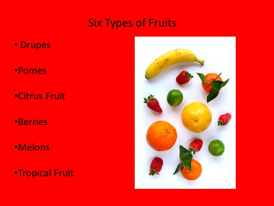 Six Types of Fruits Drupes Pomes Citrus Fruit Berries Melons