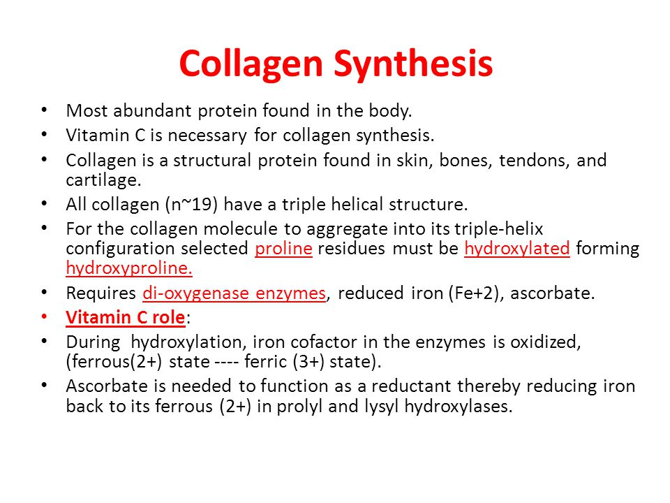 Collagen Synthesis Most abundant protein found in the body.