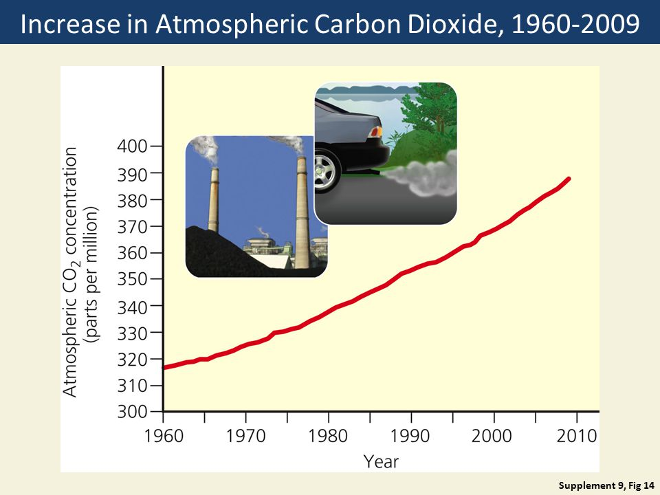 Increase in Atmospheric Carbon Dioxide,