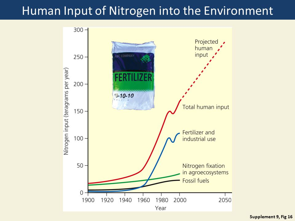 Human Input of Nitrogen into the Environment