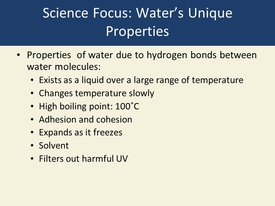 Science Focus: Water's Unique Properties
