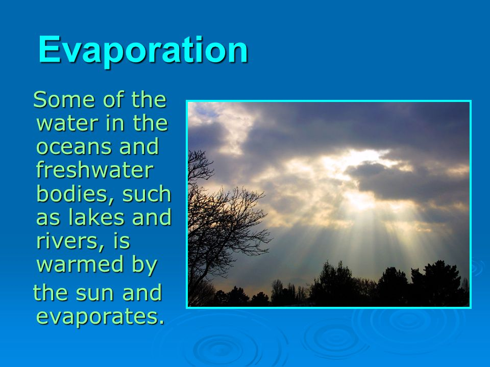 Evaporation Some of the water in the oceans and freshwater bodies, such as lakes and rivers, is warmed by.