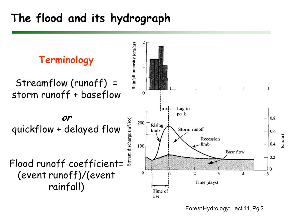 The flood and its hydrograph