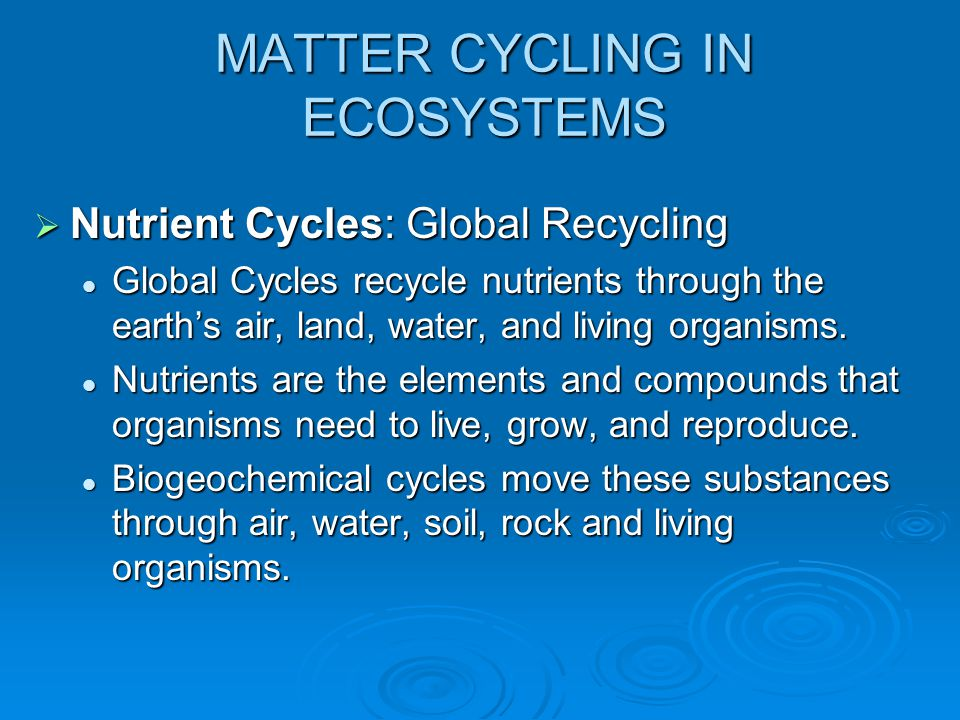 MATTER CYCLING IN ECOSYSTEMS