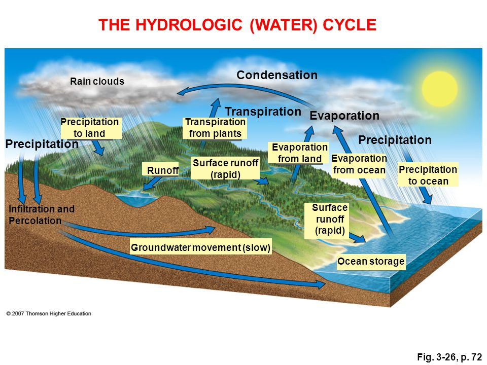 THE HYDROLOGIC (WATER) CYCLE