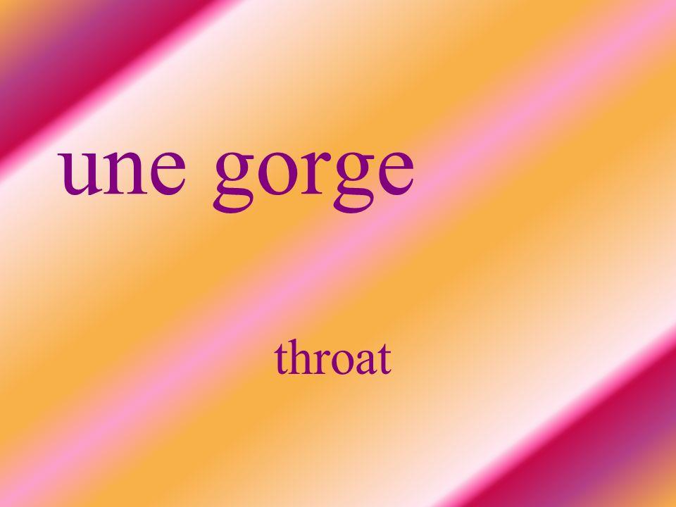 une gorge throat