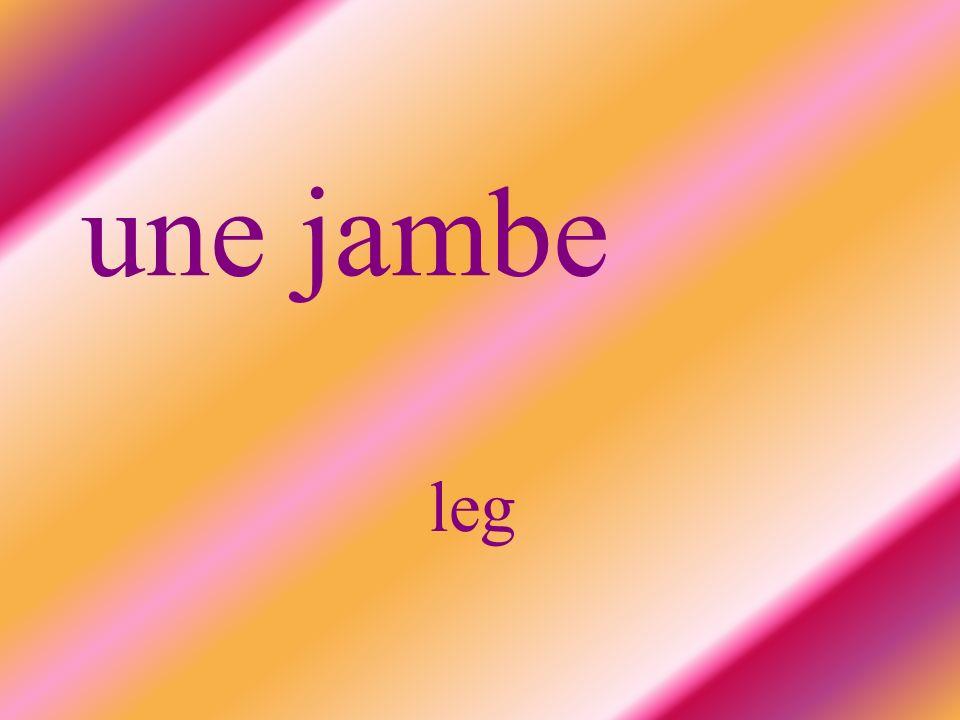 une jambe leg