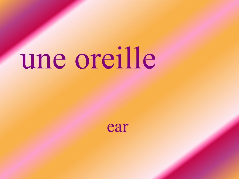 une oreille ear