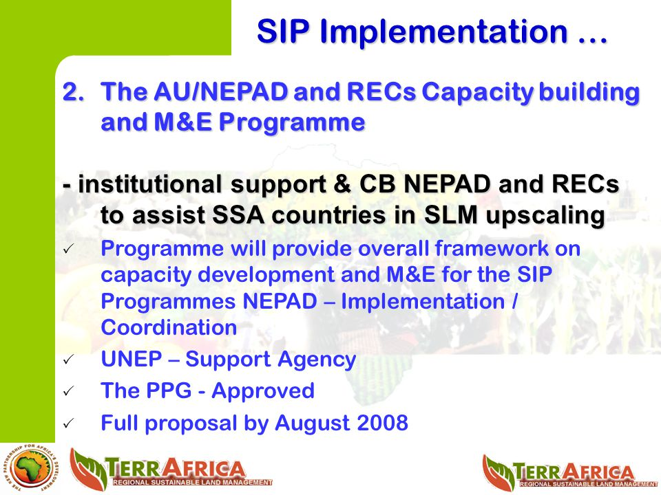 SIP Implementation … The AU/NEPAD and RECs Capacity building and M&E Programme.