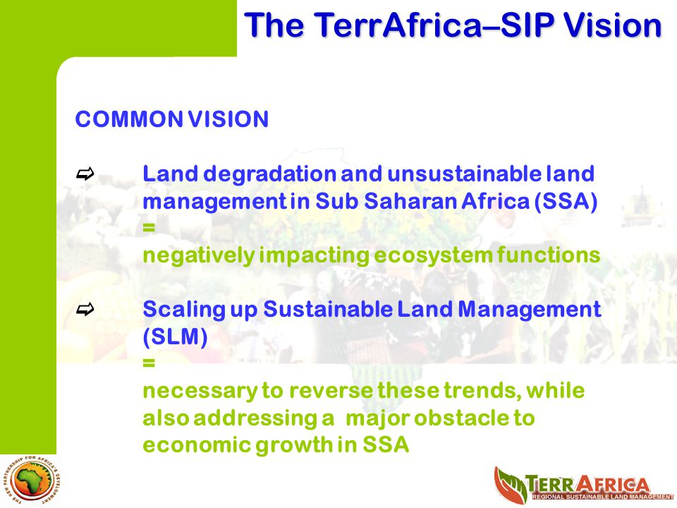 The TerrAfrica–SIP Vision