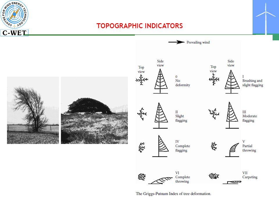 TOPOGRAPHIC INDICATORS