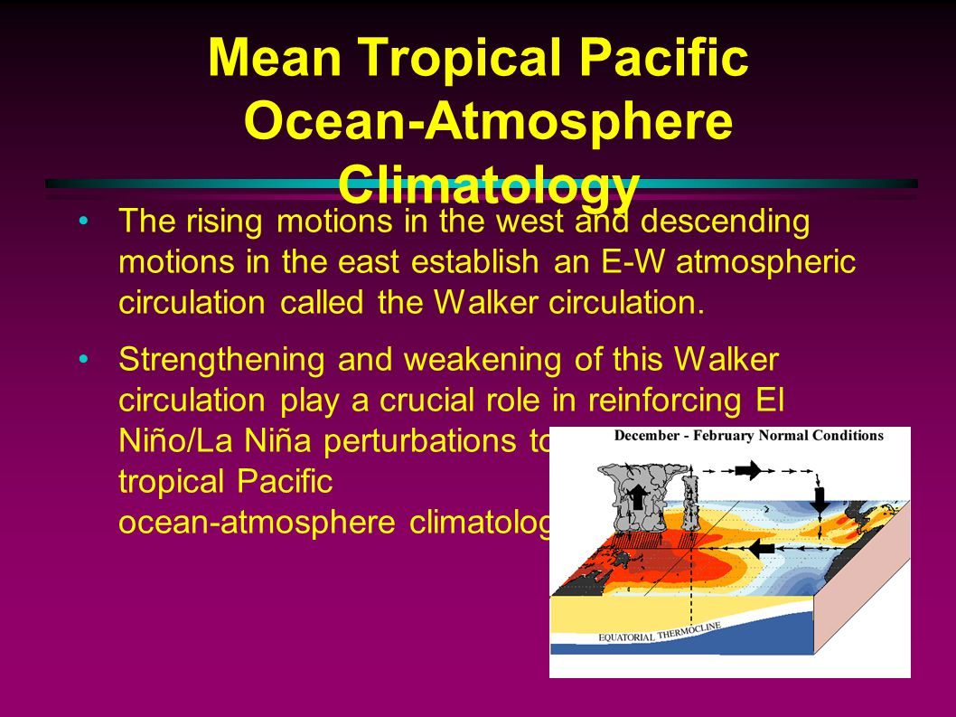 Mean Tropical Pacific Ocean-Atmosphere Climatology