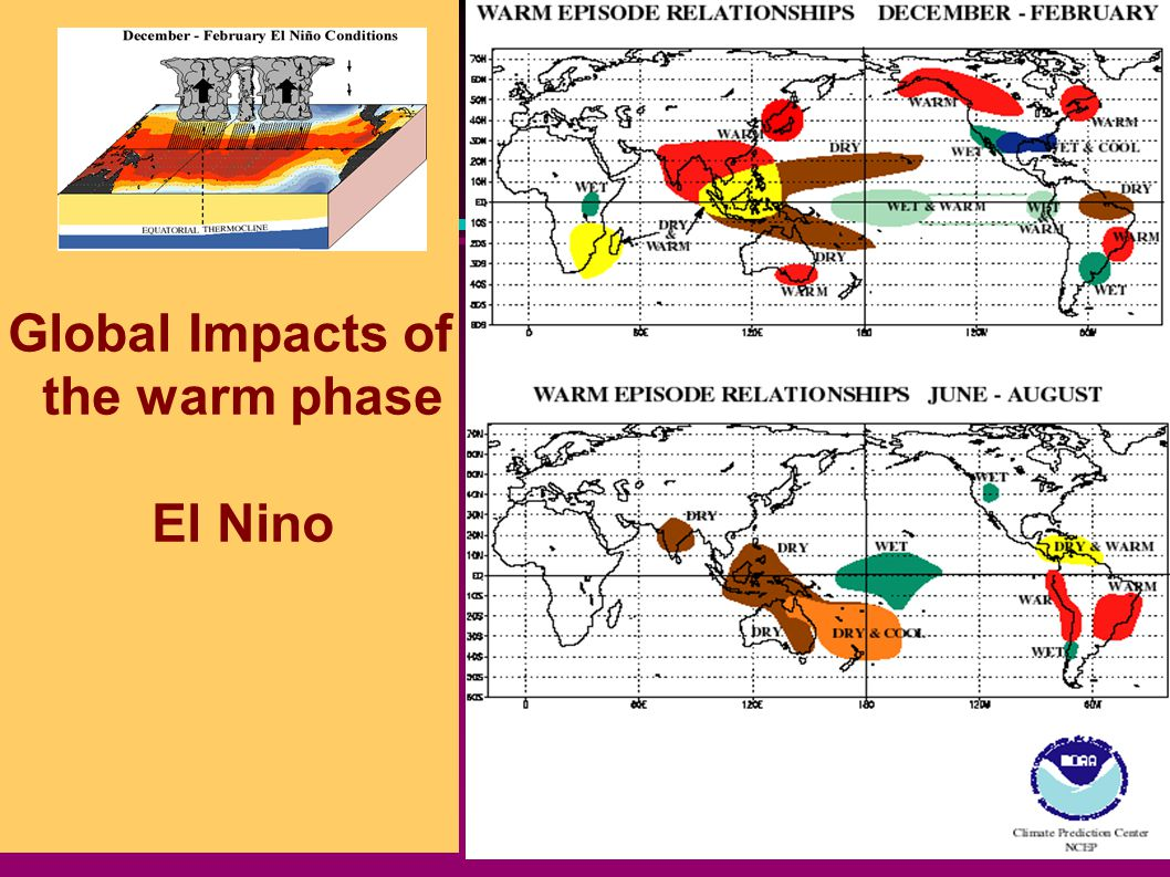 Global Impacts of the warm phase El Nino
