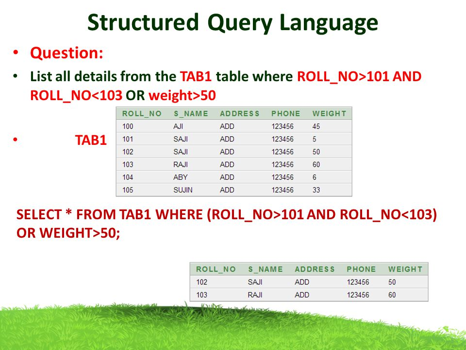 structure query language Learn to be more productive with sql server 2005 express edition with this quick introduction to the t-sql language and the basics of getting information from the purpose of this article is to lay out the basic structure and use of sql select queries and statements these or query, that.