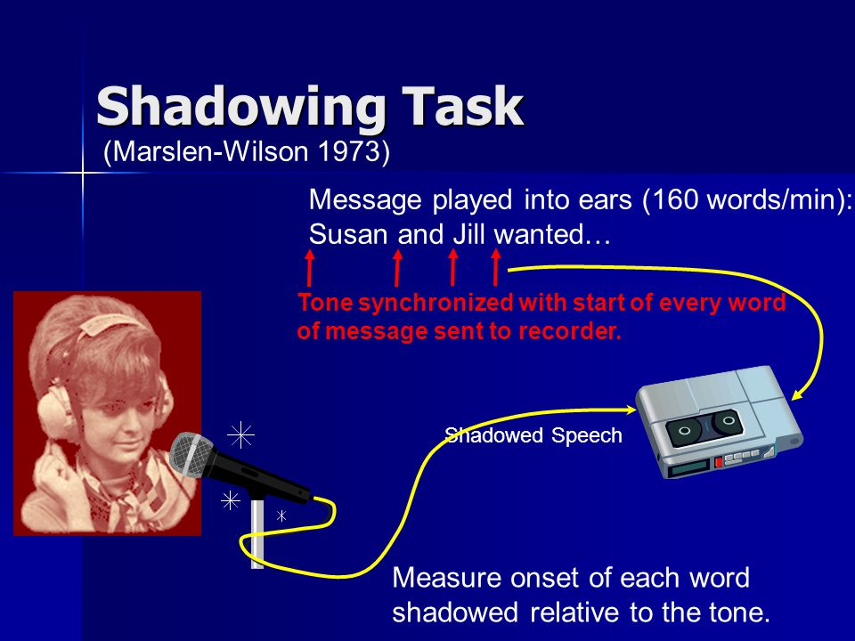 Questions To Ask When Shadowing