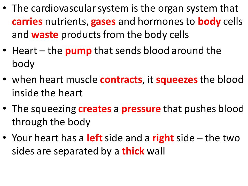 The cardiovascular system is the organ system that carries nutrients, gases and hormones to body cells and waste products from the body cells