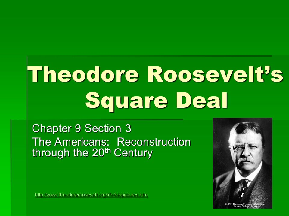 theodore rooseveltís new deal essay With the assassination of president mckinley, theodore roosevelt, not quite 43, became the youngest president in the nation's history he brought new excitement and power to the presidency, as he vigorously led congress and the american public toward progressive reforms and a strong foreign policy.