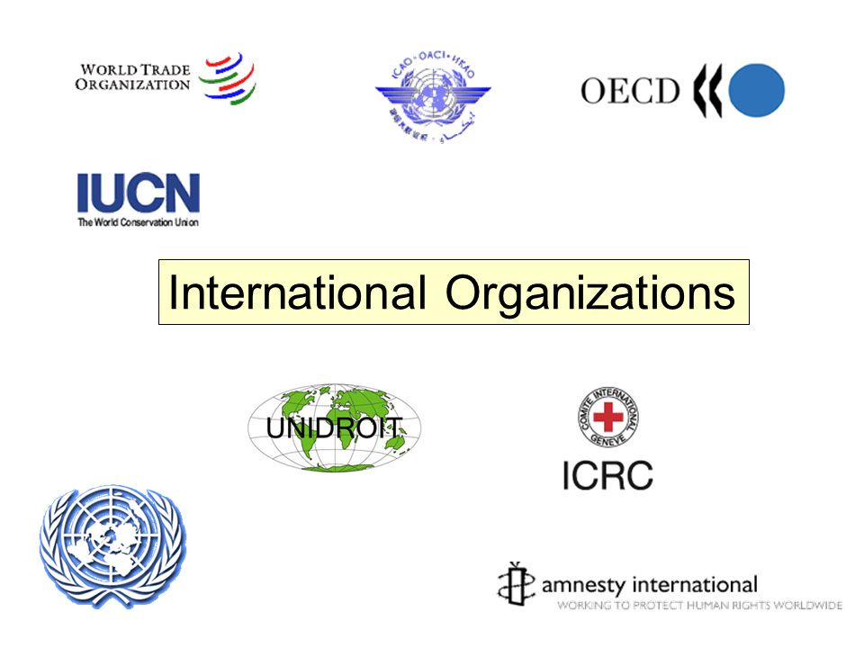 an analysis of the topic of the intergovernmental organization
