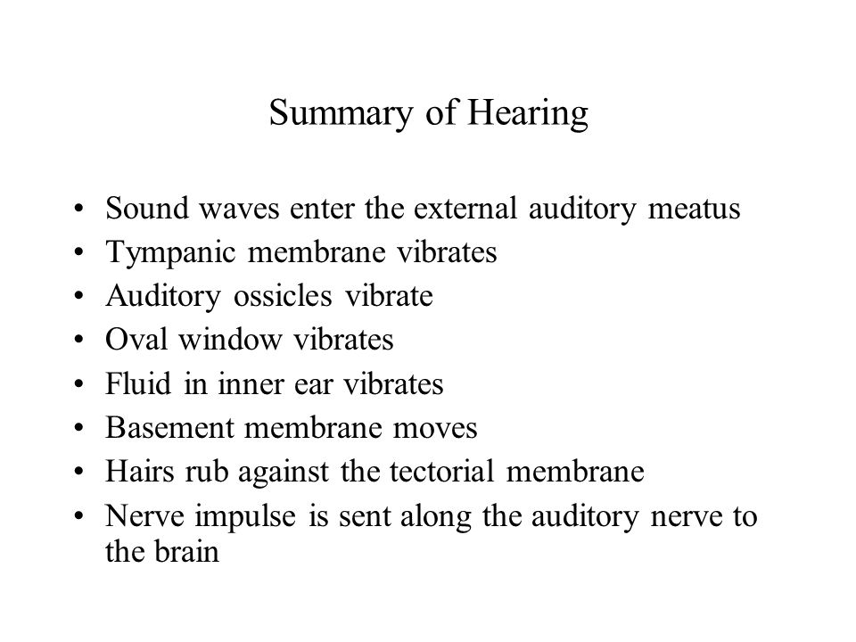 Summary of Hearing Sound waves enter the external auditory meatus