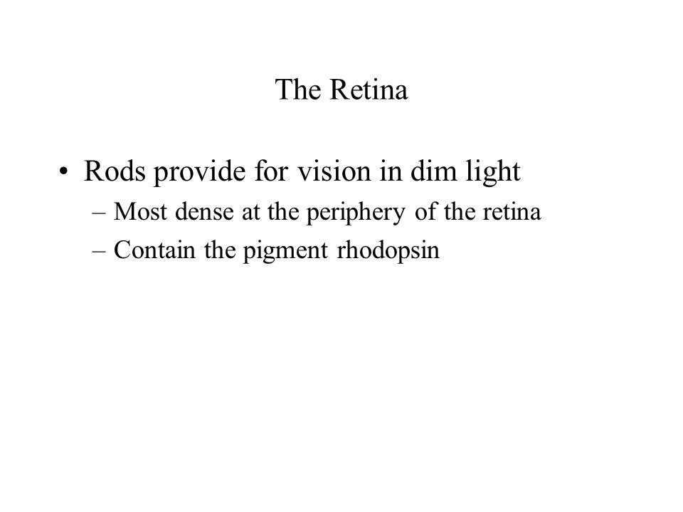 Rods provide for vision in dim light