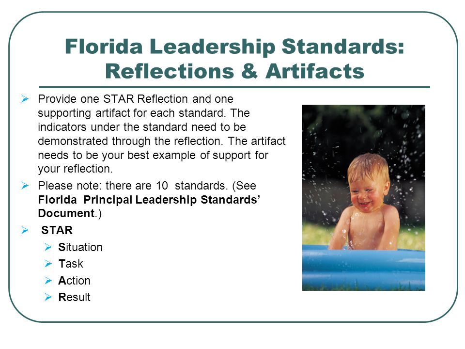 Florida Leadership Standards: Reflections & Artifacts