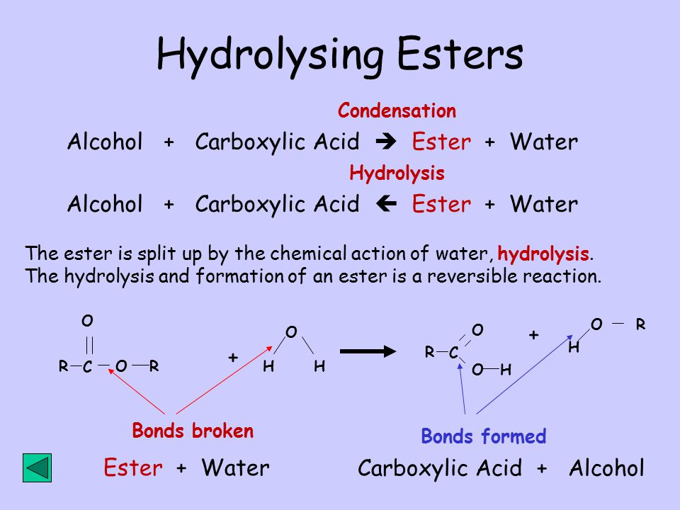 Hydrolysing Esters Alcohol + Carboxylic Acid  Ester + Water