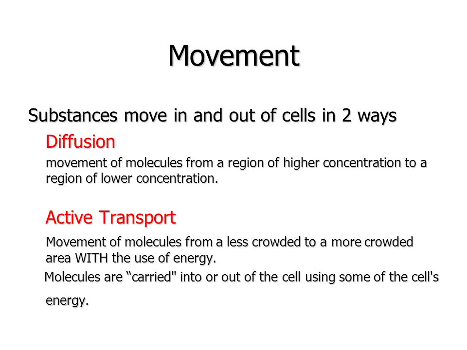 Movement Of Substances Ppt Download