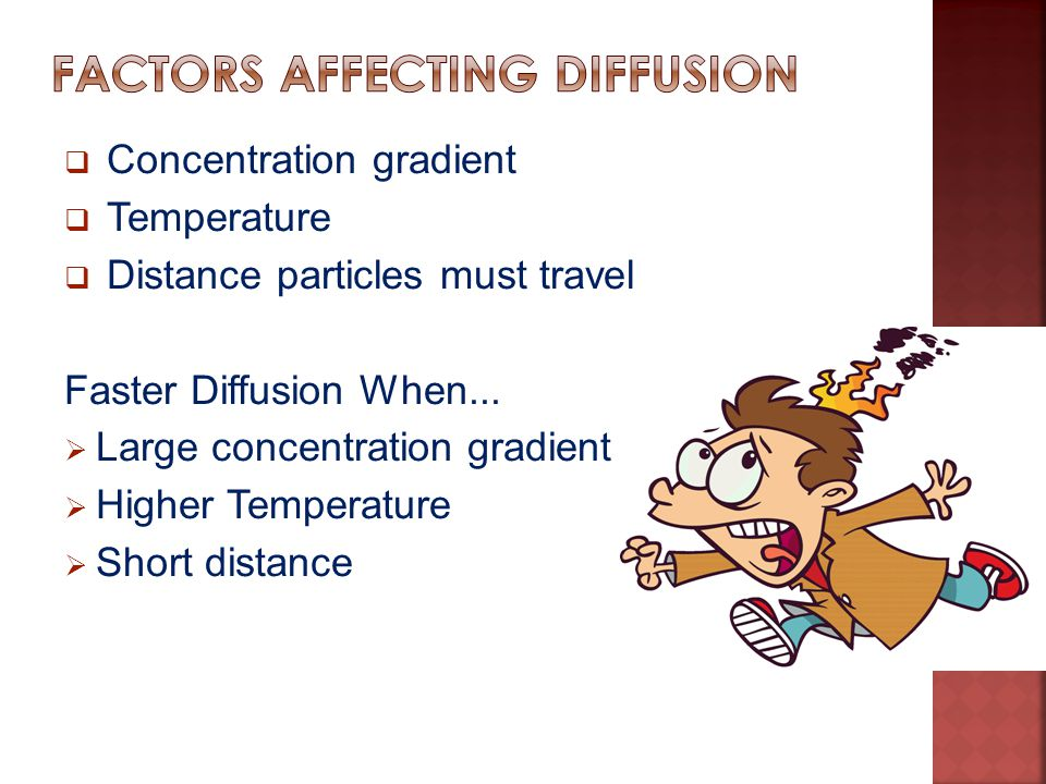 Factors Affecting Diffusion