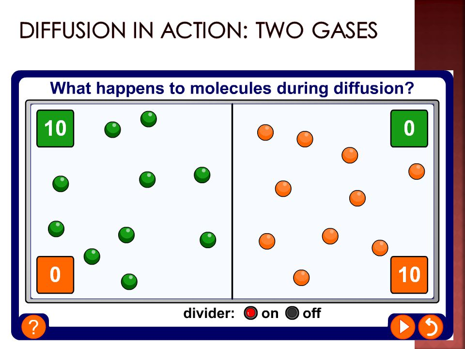 Diffusion in action: two gases