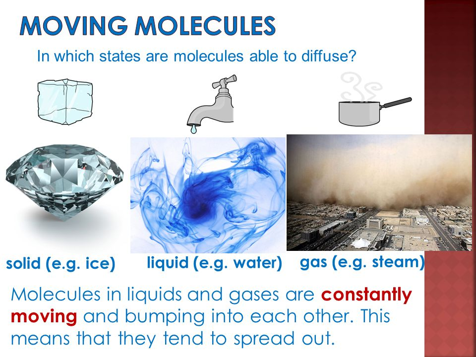 Moving molecules In which states are molecules able to diffuse gas (e.g. steam) liquid (e.g. water)