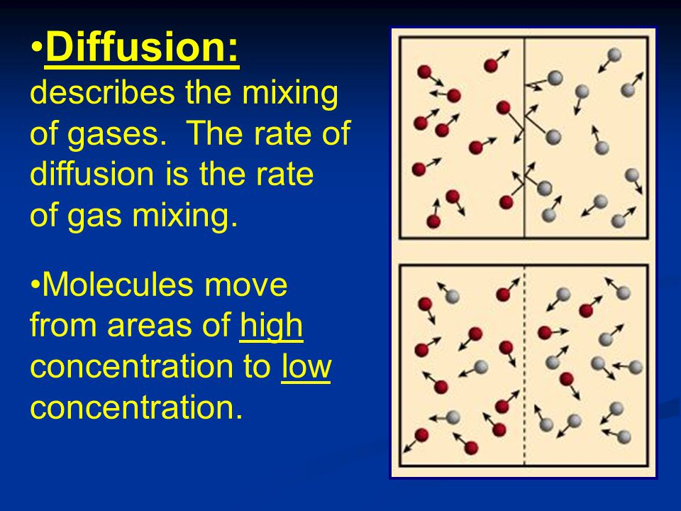 diffusion in gases Diffusion is proportional to the concentration gradient, which for gases is the same as the partial pressure gradient the rate is dependent on the velocity of the gas molecules, which depends on the temperature.