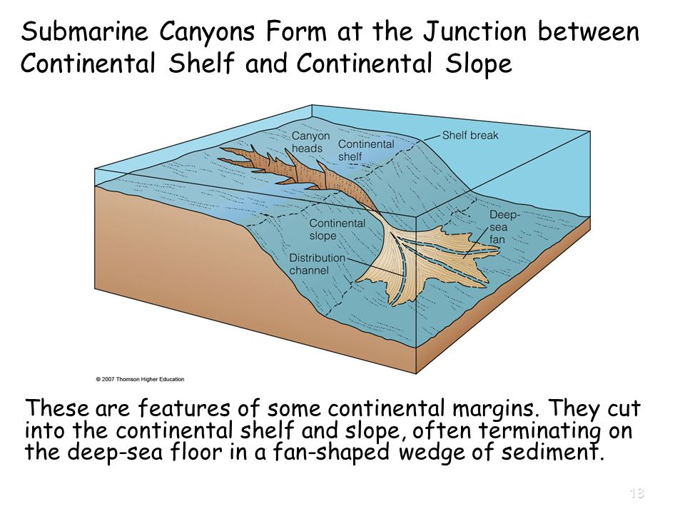 Chapter 4 Continental Margins and Ocean Basins - ppt video online ...