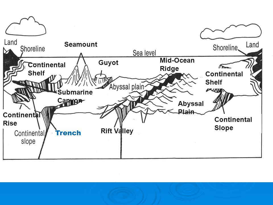 1 what is topography of the ocean ppt video online for Ocean floor features definition