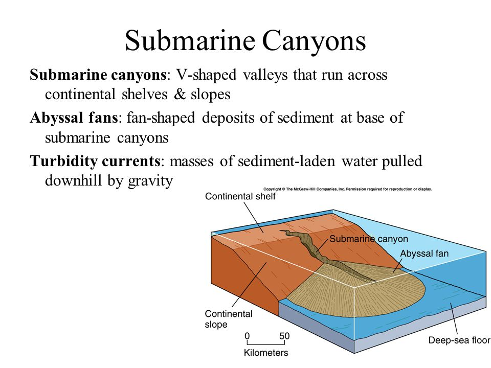 Abyssal Plains Are Very Flat Features That Form When Seafloor ...
