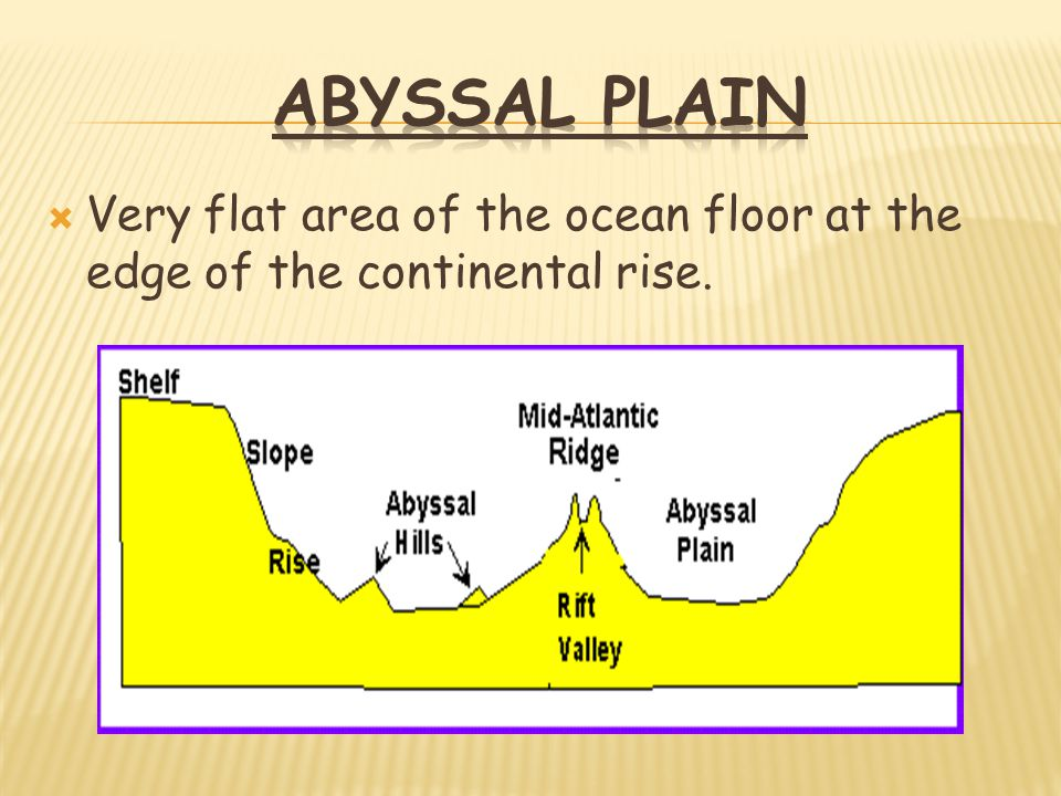 TOPOGRAPHY OF THE SEAFLOOR NOTES - ppt video online download