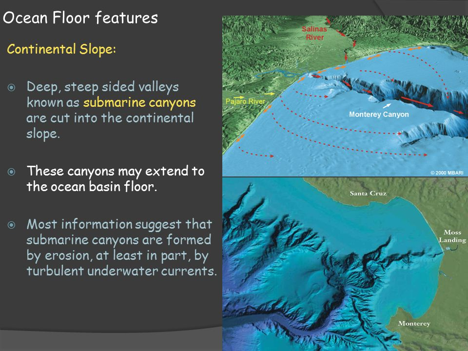 Earth science 14 2 features of the ocean floor ppt video for 10 facts about the ocean floor