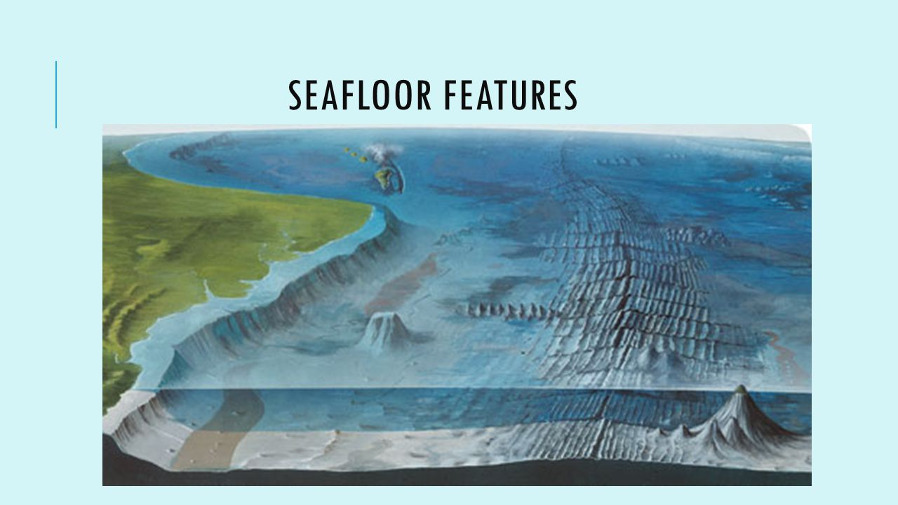 Ocean Floor Elevation : Ocean zones bathymetry ppt video online download