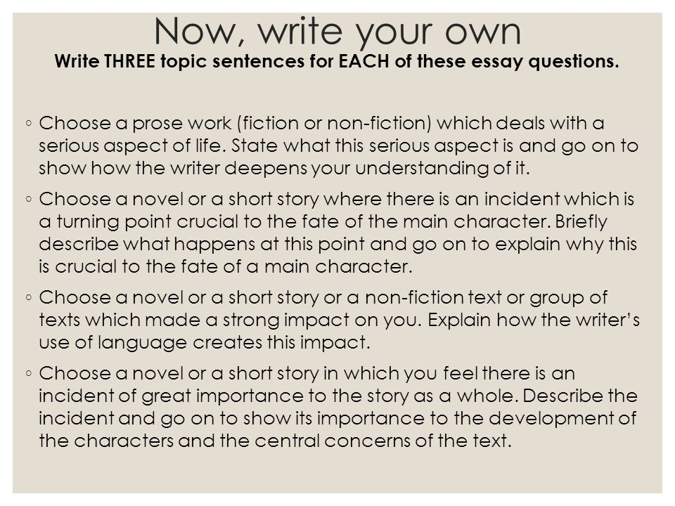 The writer essay and memoir contest    Writing a cv for academic     Four basics of a good persuasive essay