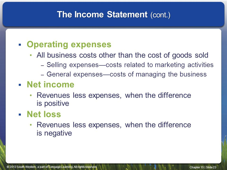 The Income Statement (cont.)