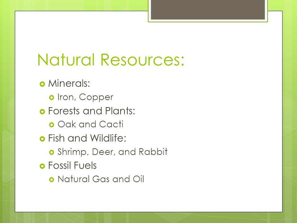Natural Resources: Minerals: Forests and Plants: Fish and Wildlife: