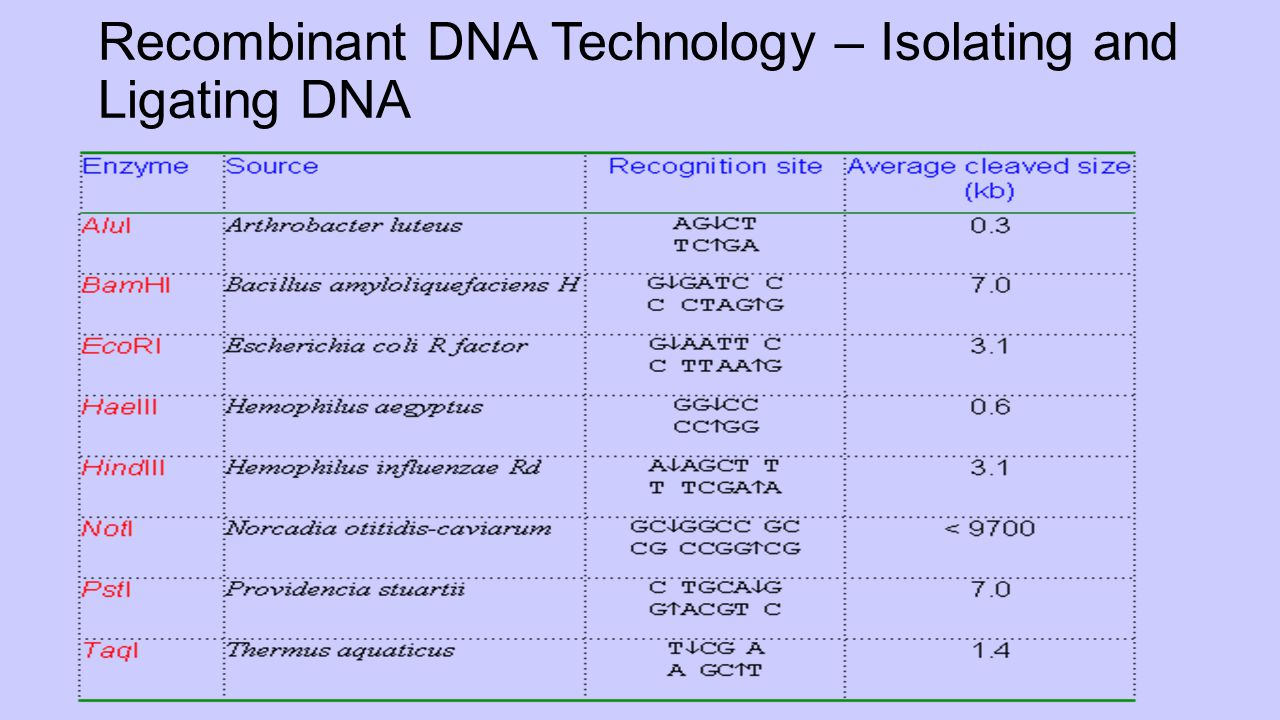 Recombinant DNA Technology – Isolating and Ligating DNA