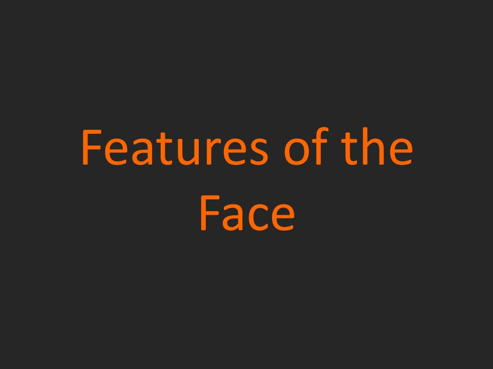 Features of the Face