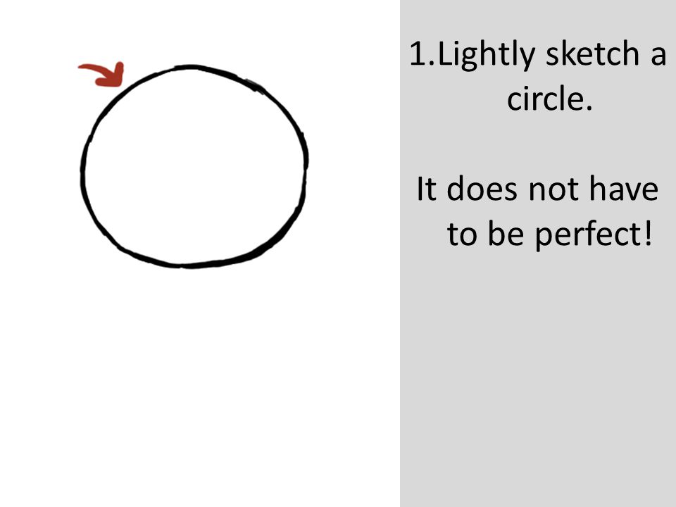 Lightly sketch a circle.