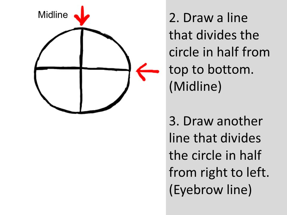 Midline 2. Draw a line that divides the circle in half from top to bottom. (Midline)